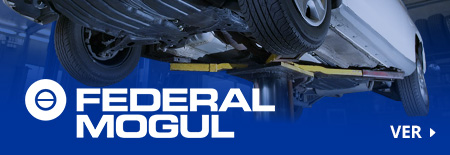 categoria pie - federal mogul